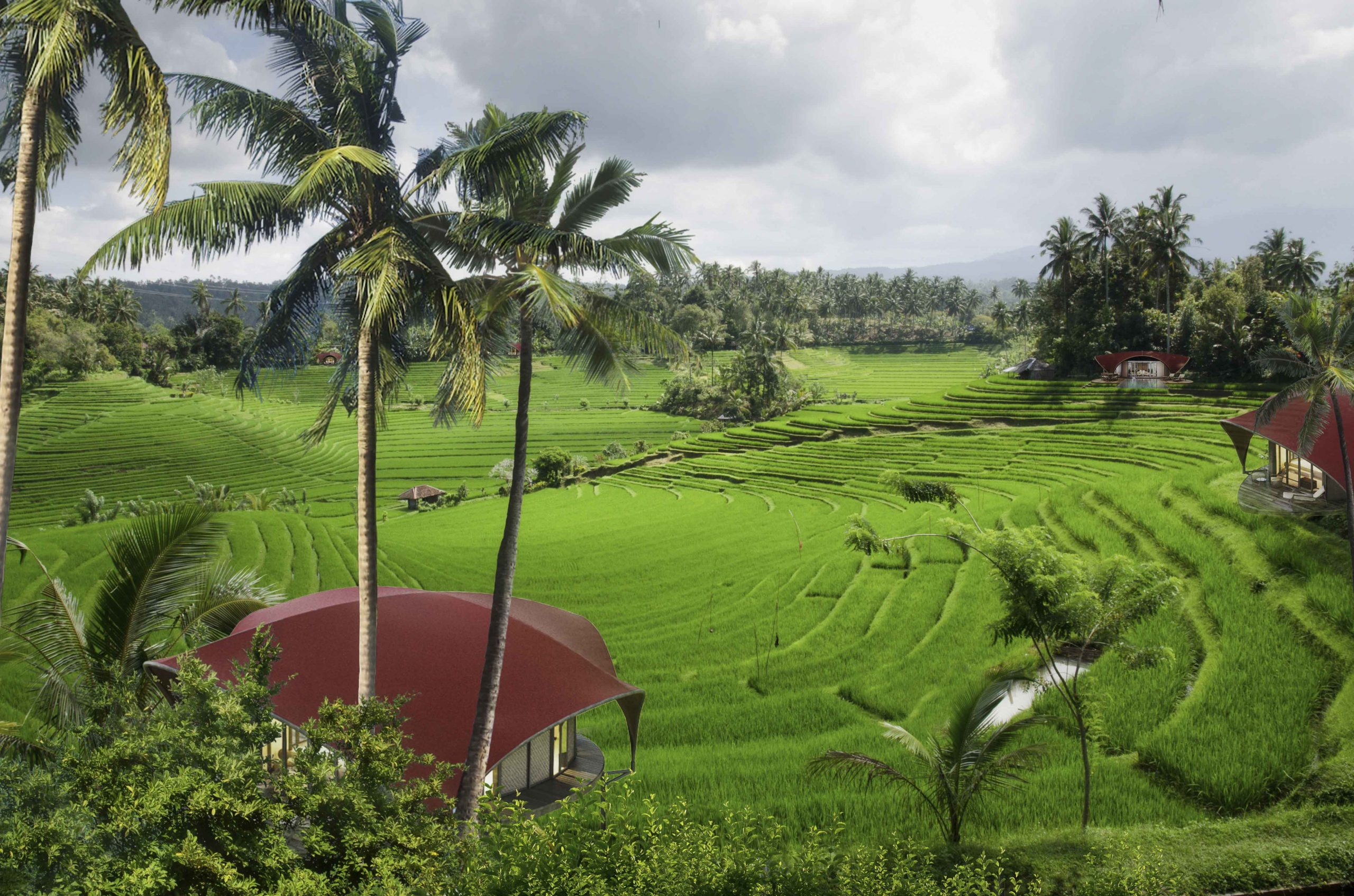 kanopya-lodge-infinity-rice-field-bali